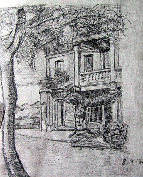 Boceto fachada con árbol