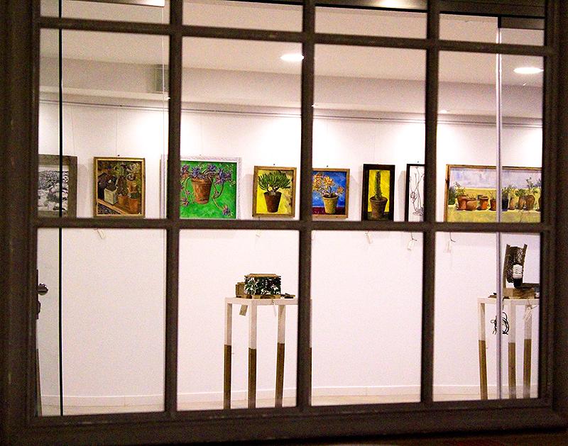 Vista del interior de la galería con los cactus