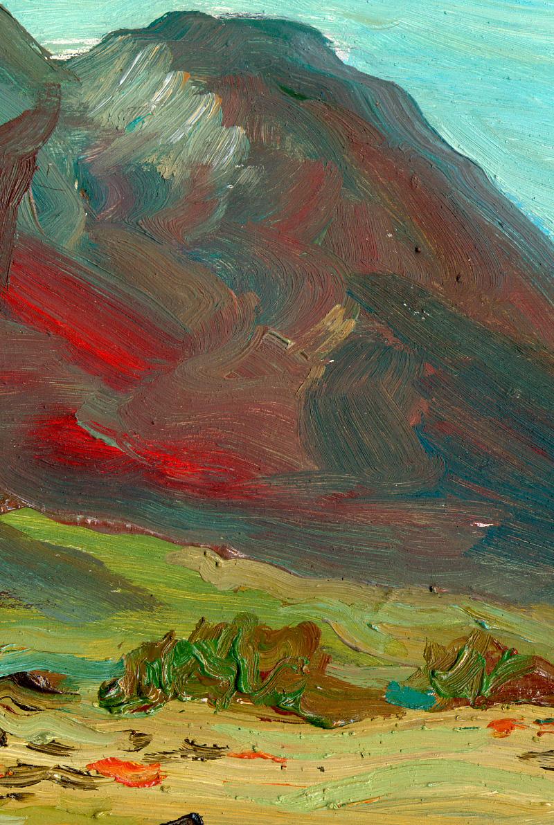 Detalle de El Cabo de Gata